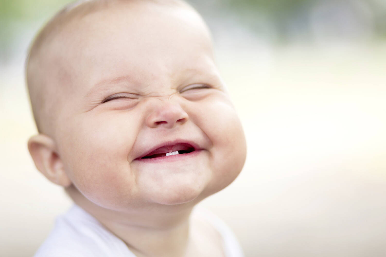 Image result for baby teeth